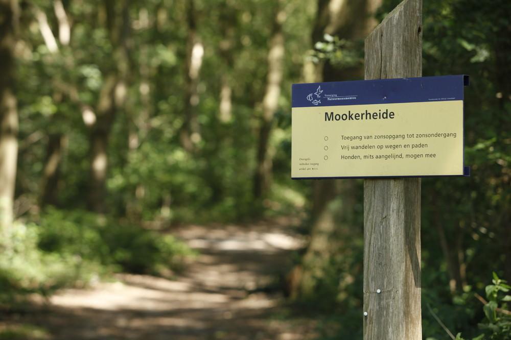 Mookerheide Photo Impressions Vakantie Bij Meeussen